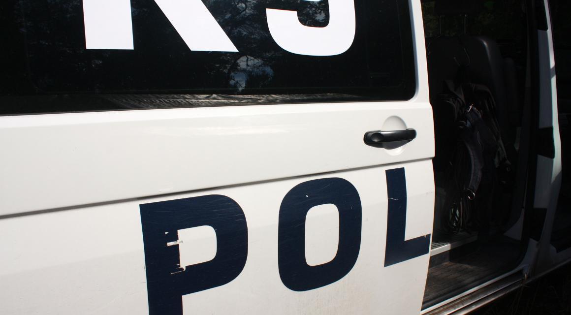16 aring korde in i polisbil under jakt
